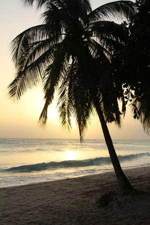 Sunset on a Barbados beach.