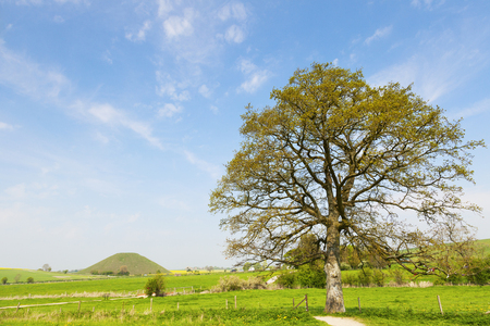Silbury Hill in its landscape, Wiltshire, England, in spring. No one knows why this mound was put here, except that it is not a burial mound.