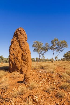 Giant Termite Mound on Outback Western Australia 写真素材