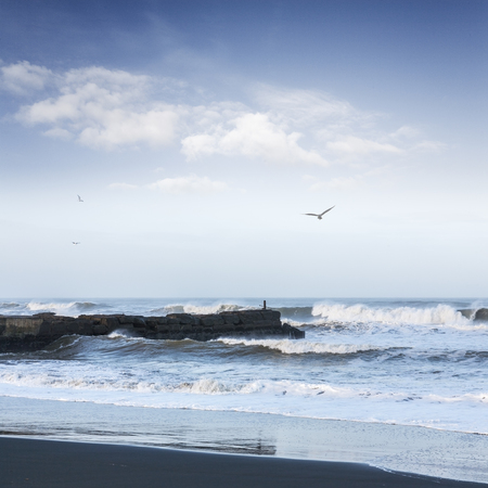 Wild Seascape with Old Jetty and Seagulls Overhead Square