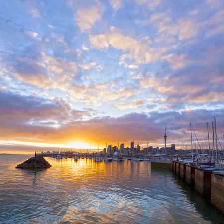 Skyline di Auckland e porto turistico di Westhaven