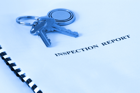 Real Estate - Inspection Report Blue Tone