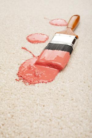 Accident Spilled Paint on Carpet Insurance Claim Accidental Dama Reklamní fotografie