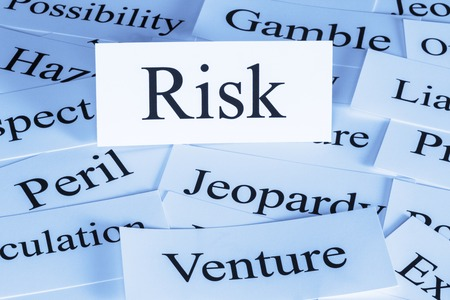 Risk Concept in Words