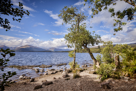 Loch Lomond Beautiful Lakeside View with Trees 免版税图像