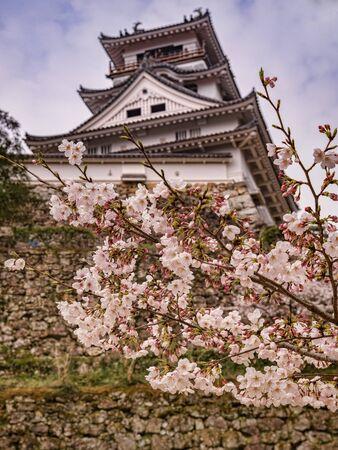 Kochi Castle, Japan