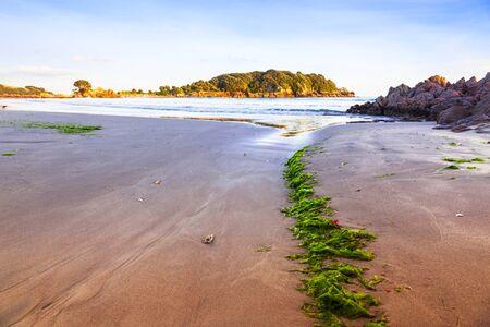 Beach Mount Maunganui Bay of Plenty New Zealand