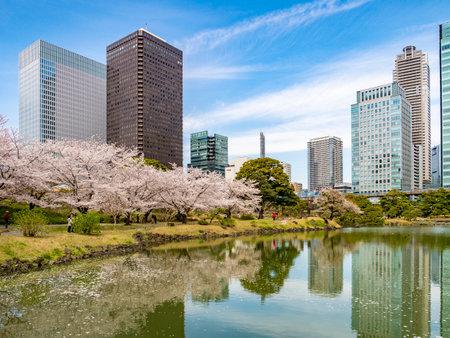 Kyu-Shiba-rikyu Gardens, Tokyo 免版税图像 - 156056048
