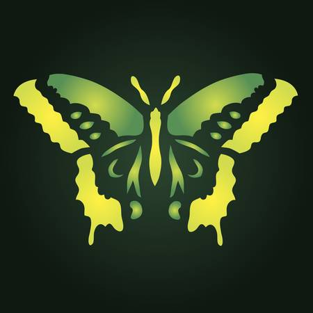 colorful butterfly illustration for your design Stock Vector - 17223930