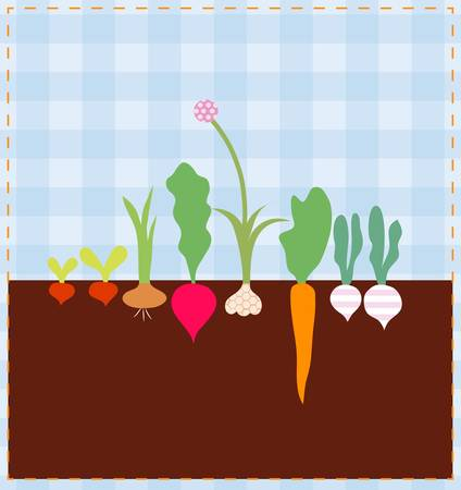 A set of fresh vegetables on the bed Vector