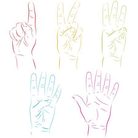 phalanx: Illustrazione vettoriale di mani umane rendendo numeri