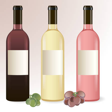 Vector set of wine bottles with grapes