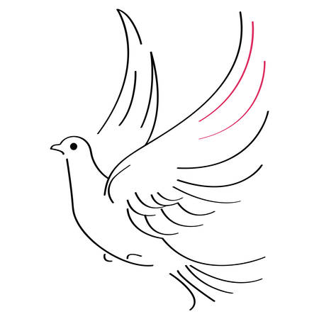 Vector illustration of flying dove on white background Vettoriali