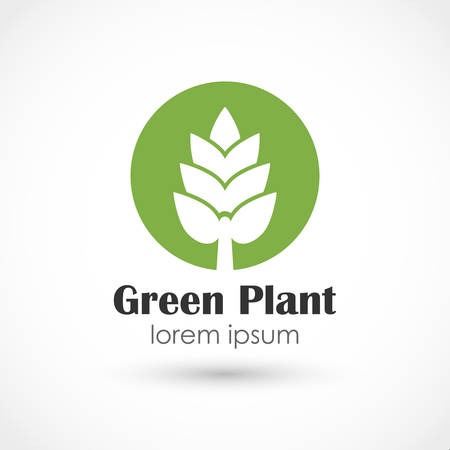 newbie: illustration of a Green plant