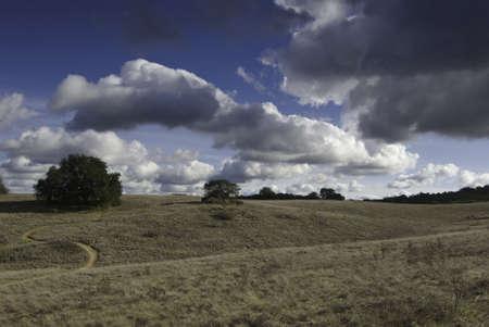 푸른 하늘 산세 흰색 격렬 구름과 플라타너스 나무와 언덕.