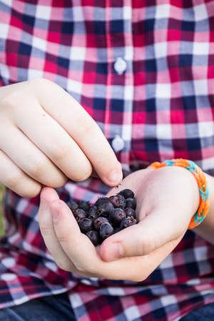 handbreadth: girl eating berries