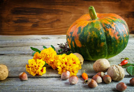 marigolds: Autumn still life: pumpkins, walnuts, marigolds