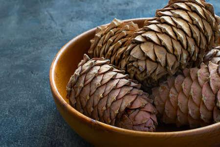 cedro: Cedar cones with pine nuts in a bowl close-up, copy space Foto de archivo