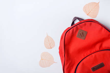 Backpack and orange leaves on a blue background. Back to school concept.