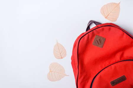 Rugzak en oranje bladeren op een blauwe achtergrond. Terug naar school-concept.