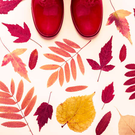 Multicolored autumn leaves and red rubber boots. Autumn background.