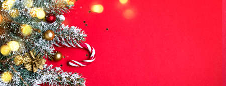 Christmas coniferous border with shining lights. Long banner format.