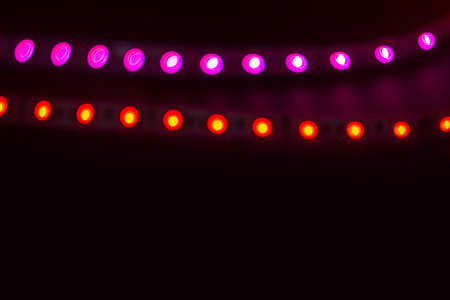 Two lines of red and purple neon lights on black.