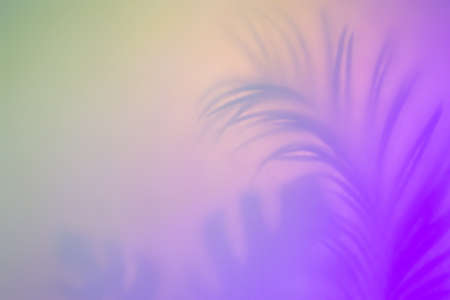 Abstract tropical  in pastel colors. Purple palm leaf silhouette.