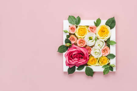 Greeting Card Womens Day on March 8th. Frame with beauty roses on pink background. Woman day natural concept.