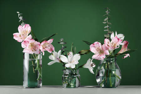 Beautiful white and pink flowers in glass bottles on green wall table background. Minimal Floral Festive Decoration, copy space