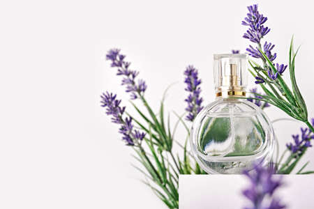 Glass perfume bottle on white podium. Floral lavender arrangement. Minimal mockup style, soft focus Stock Photo