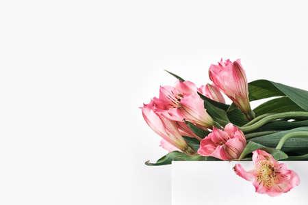 Pink alstroemeria flowers bouquet on white podium.. Floral arrangement background Stock Photo