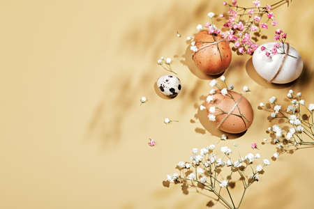 Easter eggs with natural diy decor, flowers and shadows. Zero Waste Easter Concept