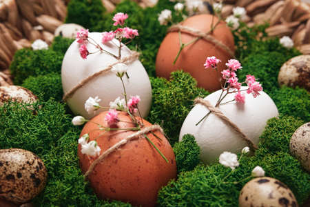 Easter eggs with natural flowers decor laid out on platter with moss close-up, soft focus. Zero Waste Easter Concept