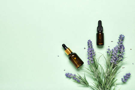 Lavender essential oil on mint green background. Aromatherapy treatment and Skincare spa cosmetics concept