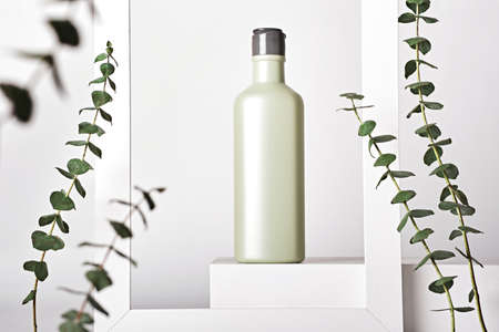 Natural cosmetic product concept. Body and hair care cosmetics on white podium and eucalyptus, copy space