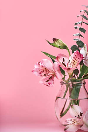 Bouquet of beautiful flowers in glass bottles on pink background. Minimal Floral Festive Decoration, copy space Stock Photo