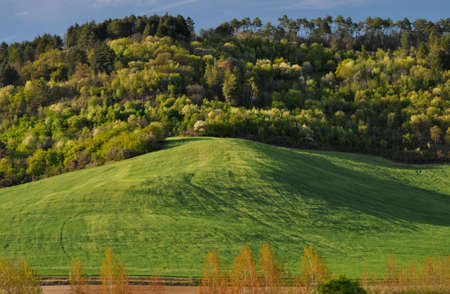 countrysides: Landscapes of the countryside between Siena and San Gimignano Stock Photo