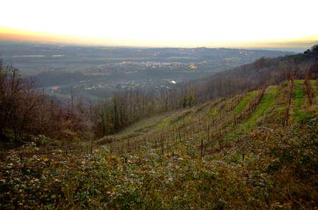 Brianza panoramic view from Montevecchia photo