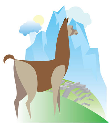 picchu: South American mammal is llama Illustration