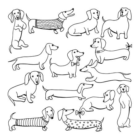 犬のダックスフントのイラストのセット