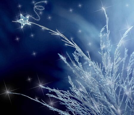 A falling star lands on some icy blue branches Stock Photo - 3906725