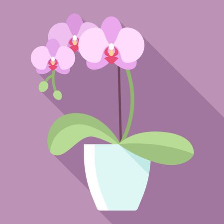 Vector illustration of orchid flower in flowerpot with long shadow. Modern pastel colors. Flat style. Reklamní fotografie - 61800448