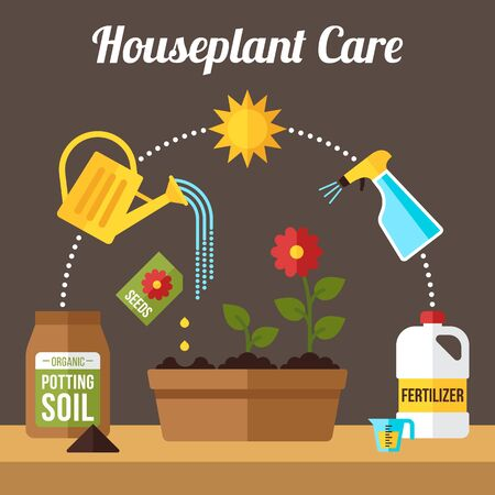 Vector houseplant growth and care infographics. Flat style. 일러스트