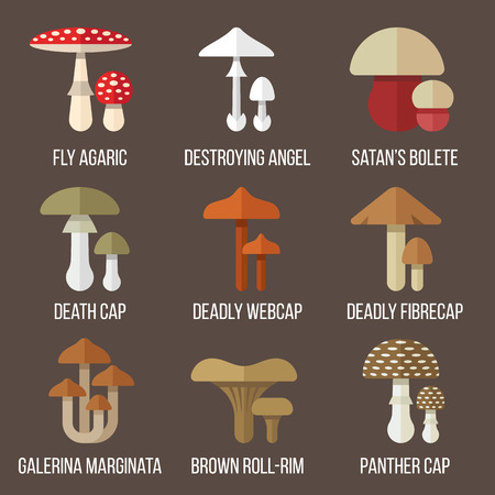 uneatable: set of poisonous mushrooms. Flat style.