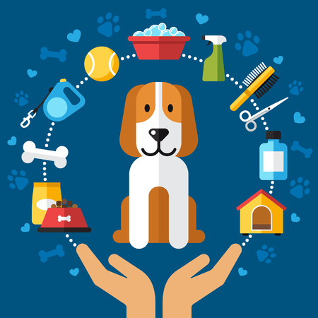 petshop: Colorful  dog care illustration. Human hands holding a puppy, which is surrounded by dog care products. Flat style.
