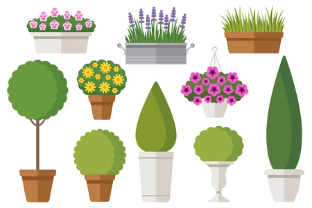 plants and trees: Vector set of outdoor potted plants: bushes, trees, flowers. Isolated on white. Flat style.