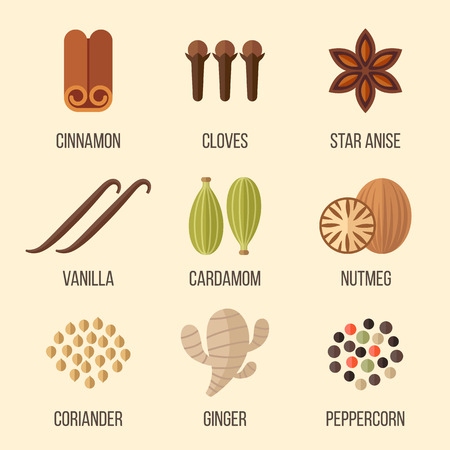 Vector set of spices illustrations. Flat style.