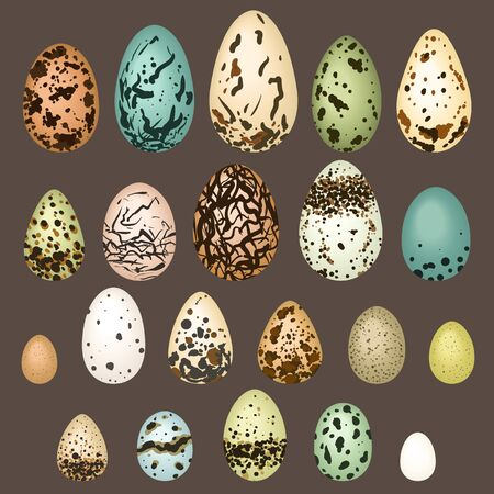Vector eggs set. Different shapes, colors, textures and sizes. Ilustrace