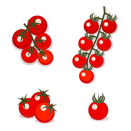 Vector illustration of cherry tomatoes. Vettoriali